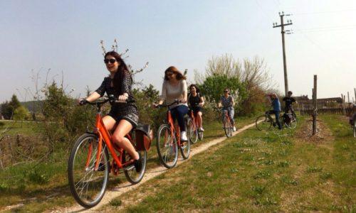 amarone wine and bike tour